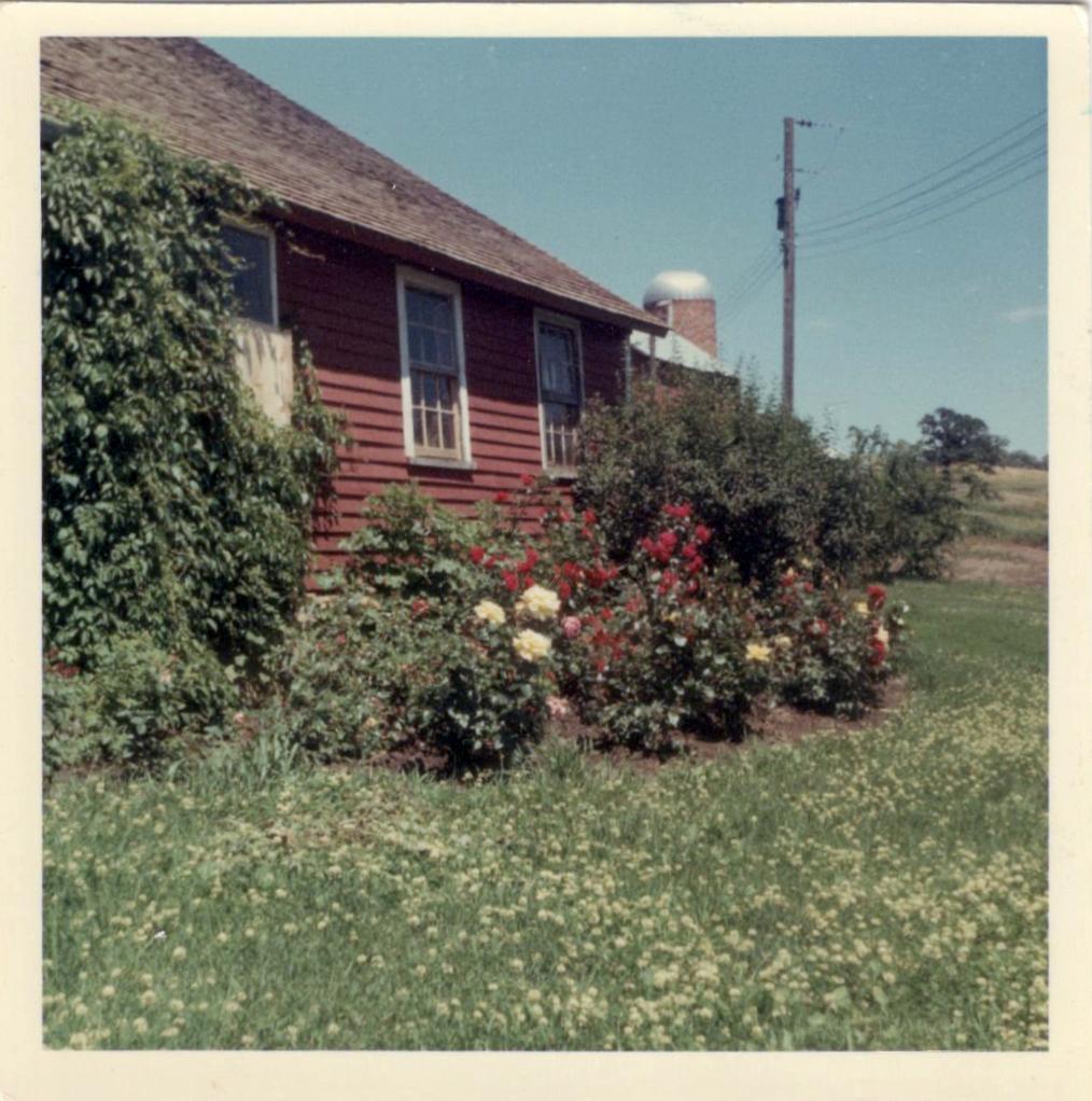 Wallin Farm House
