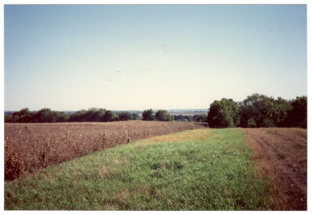 Wallin Family Farm Field