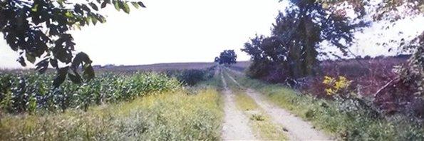 Wallin Family Farm Field Road