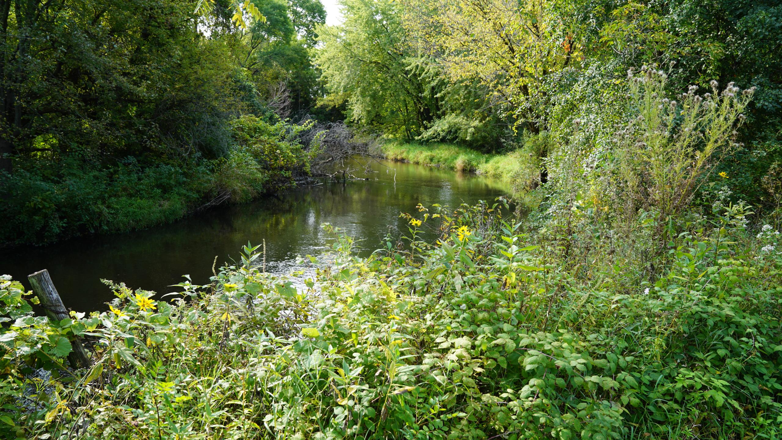 Vermillion River in Wyndham Hills
